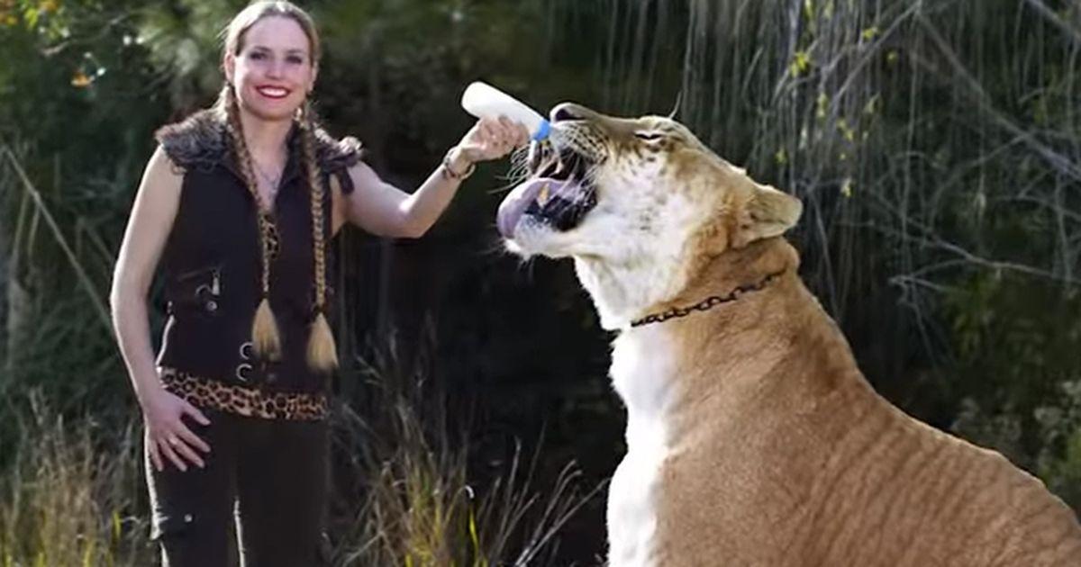 große eklige tiere